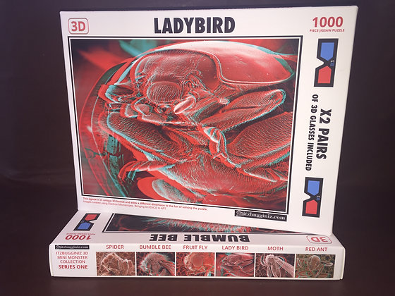 Ladybird 3D Jigsaw