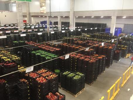 Go Live & Estabilización – Centro de distribución Acopio - Supermercados Peruanos S.A., Perú.