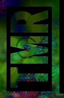 TMR-Logo-Website-PARTIAL-MIX-01.png