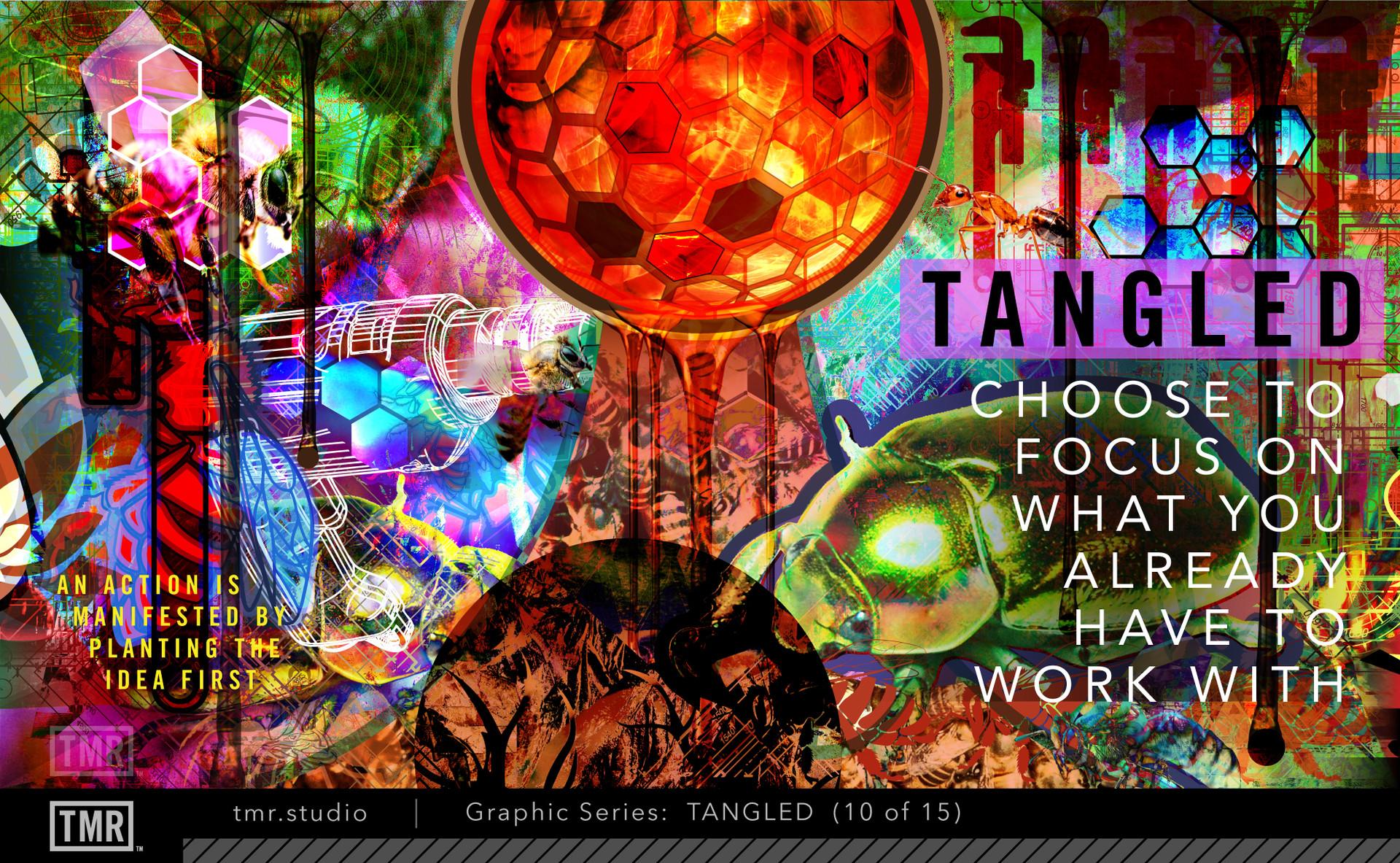 TMR-Tangled-10.jpg