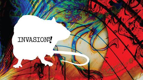 TMR-Portfolio-Invasion.jpg