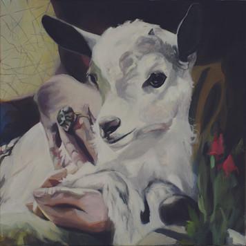 """""""Zicklein"""", 2018, Öl auf Leinwand, 70 x 70 cm"""