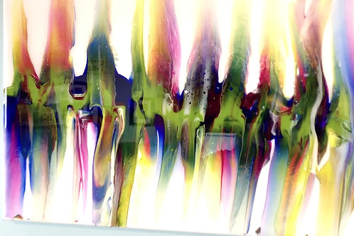 Symphony of colour video