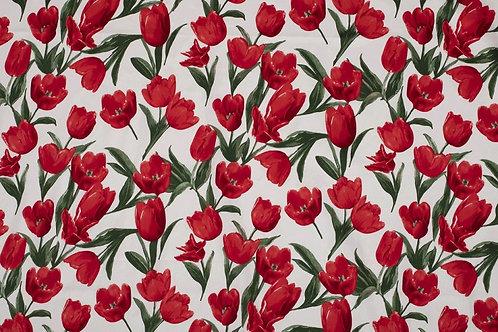 Katoen Tulpen