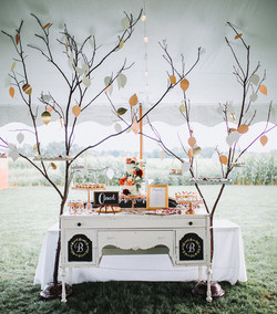 Trees Laden with Desserts