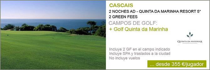 Viajes de golf bolas de golf con logo material de calidad