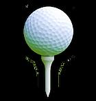 noticias y reportajes del mundo del golf