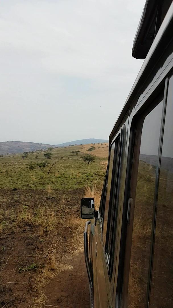 Safari-feeling im Akagera Nationalpark