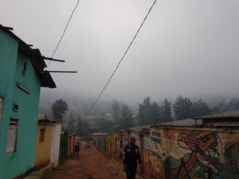 Der Nebel des Regenwalds :)