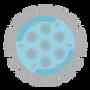 icons8-coronavirus-64.png