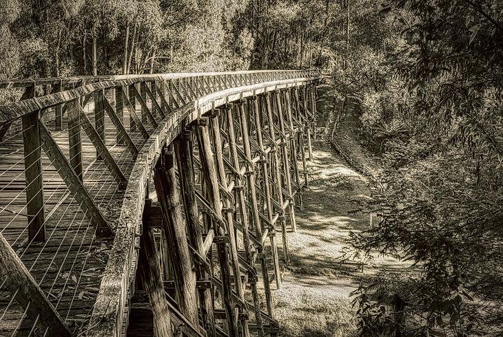 Noojee Trestle Bridge (1 of 1).jpg