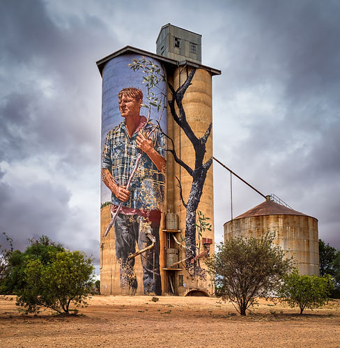 silo art Patchewollock (1 of 1).jpg