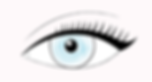 Wing Liner.PNG
