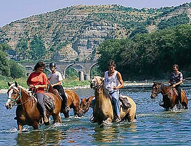 equitation-en-ardeche_edited.jpg