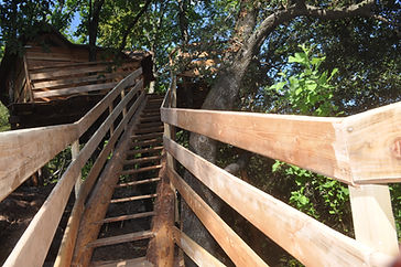 l'escalier en tronc d'arbres de la caban