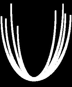 Laen-logo-seul-B.png