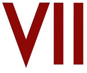 VII_Photo_Agency_logo.jpg