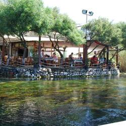 orfoz restaurant