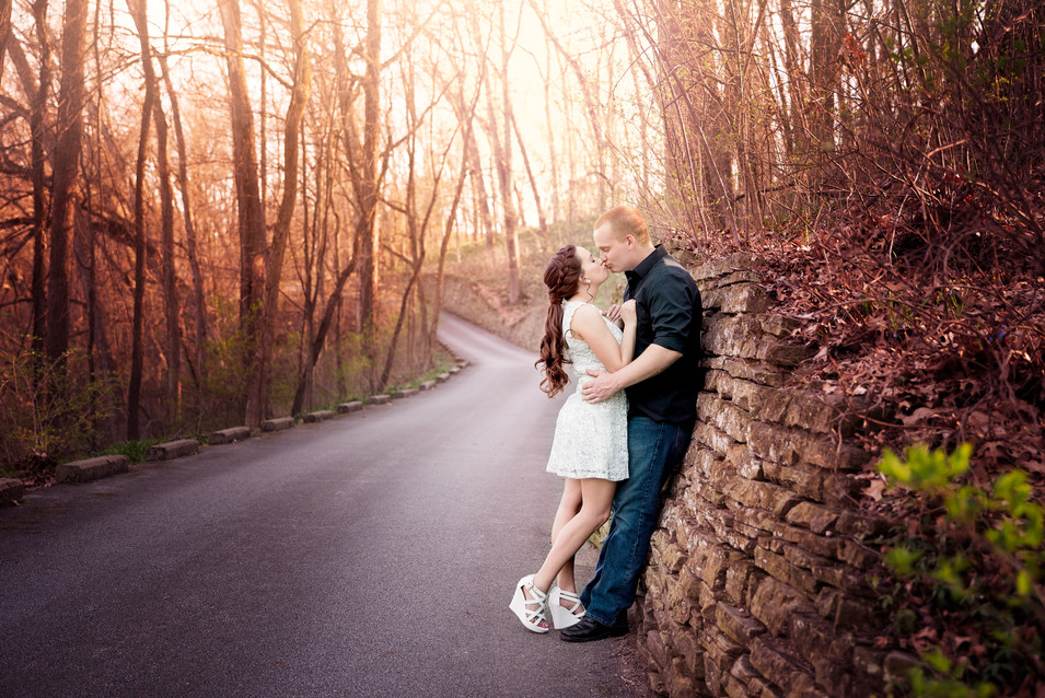 Saline, MI Engagement Photography-3.jpg