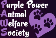 Partnering with Purple PAWS