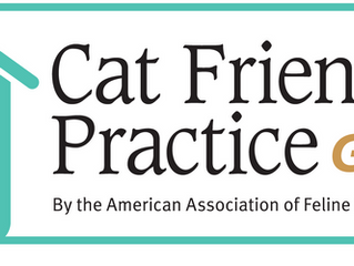 Cat Friendly Practice - Gold Certification