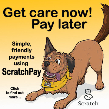 Scratchpay: Get care now! Pay later