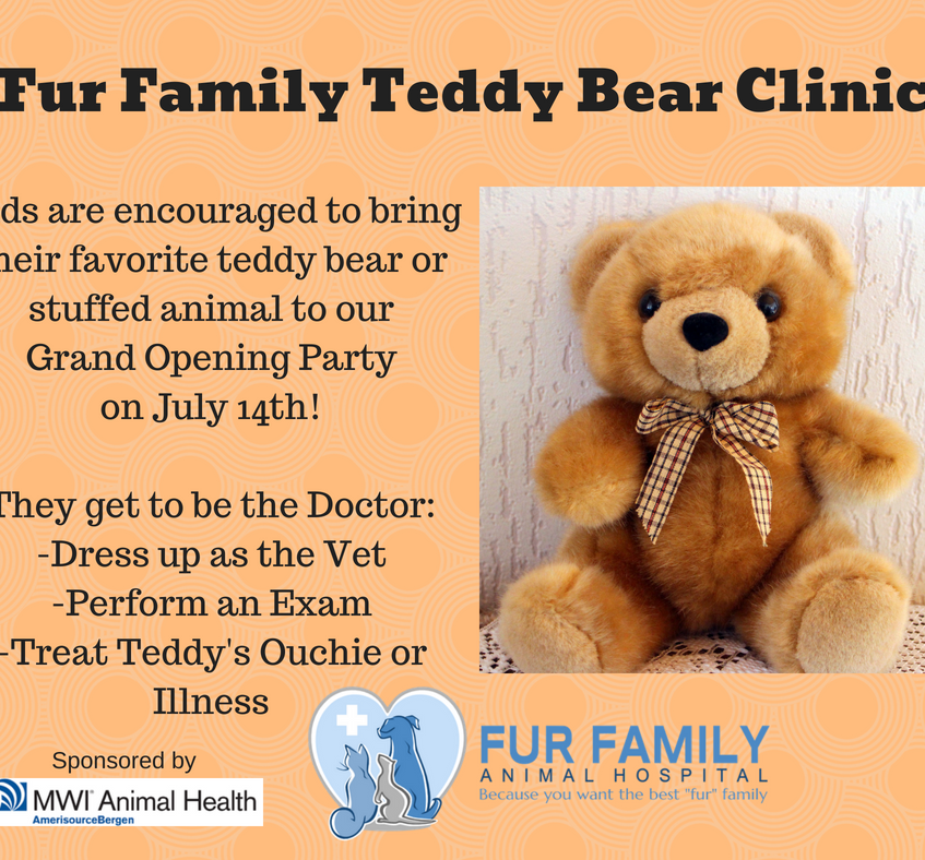Fur Family Teddy Bear Clinic!