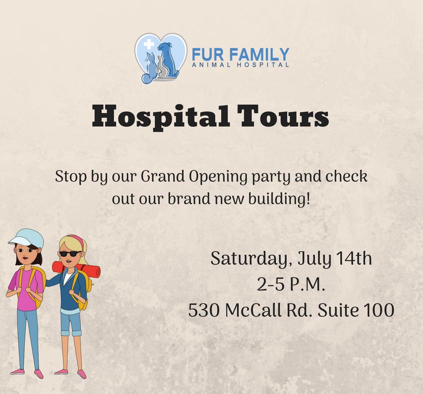 Hospital Tours
