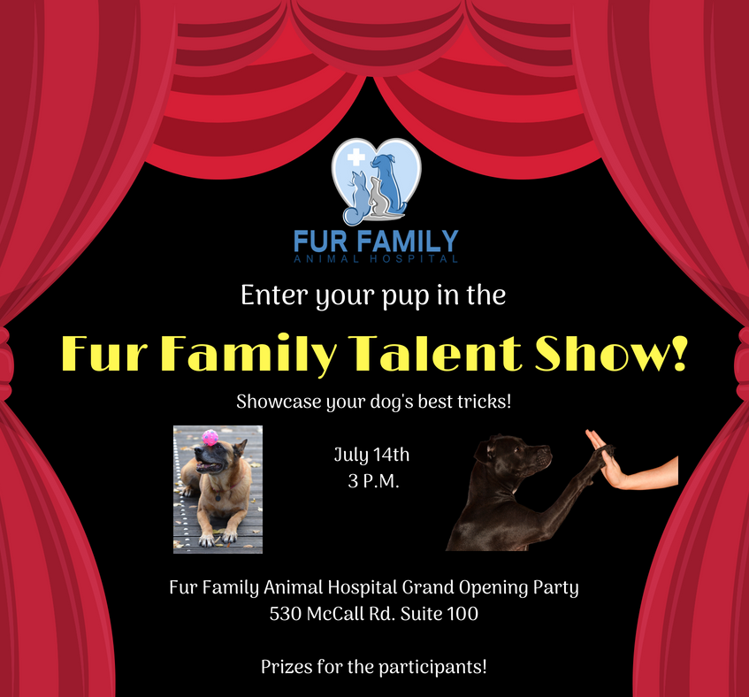 Fur Family Talent Show!