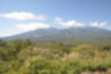 八ヶ岳バック3.JPG
