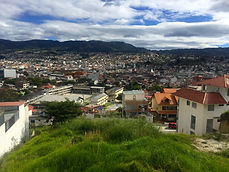 lot for sae in loja ecuador - real estate in ecuador