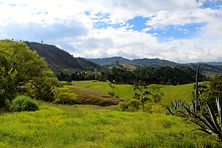 ecuador real estate, real estate in ecuador, cheap investments, fertile land, invest in water, abundant   abundant water, invest in farmland, south american real estate, cheap farmland, best farmland, land ecuador   land in ecuador, real estate bargains