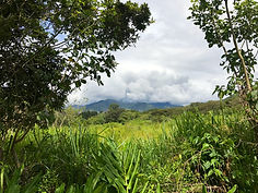 flat land for sale in vilcabamba ecuador