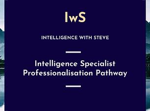 Intelligence Specialist Professionalisat