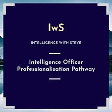 Intelligence Officer Professionalisation