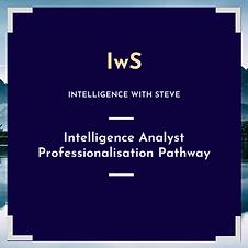 Intelligence Analyst Professionalisation