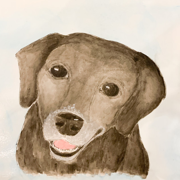 Pet Portrait Watercolor