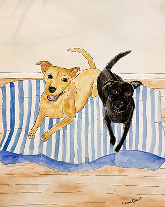 Pet portrait watercolors, painted locally in Hartsville, South Carolina by Rebecca Giese