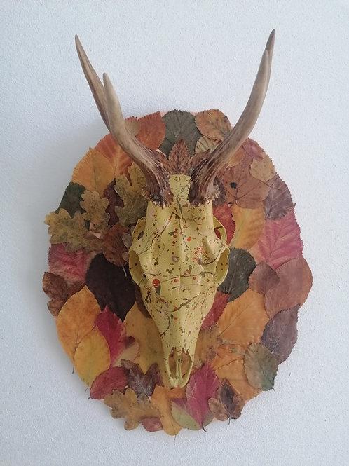 Herbstflair (G5h)