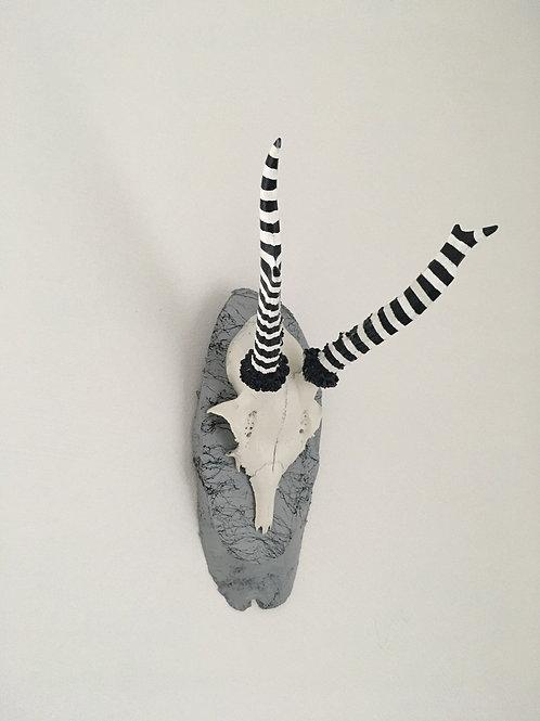 Black & White Zebra (G18)