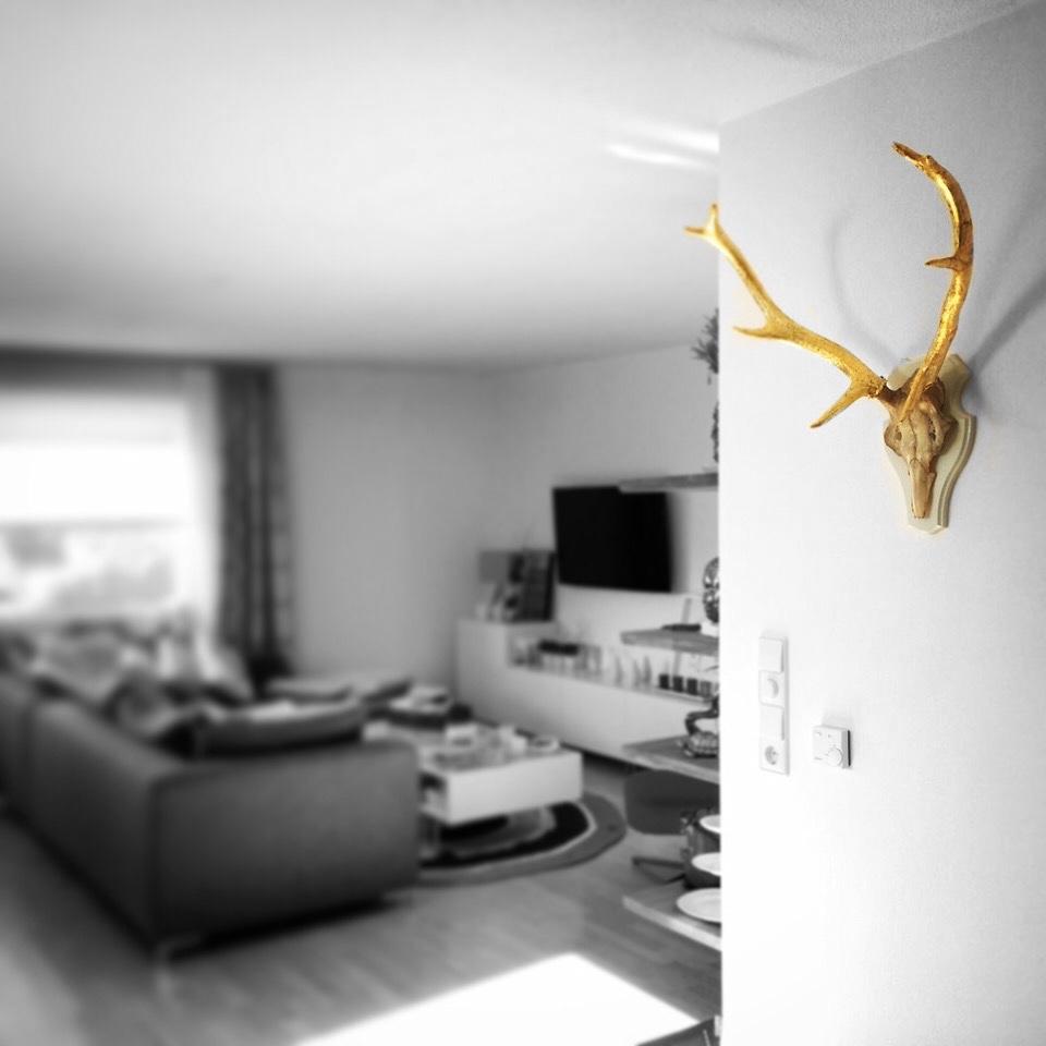 antlers deco