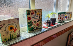 Our seedlings