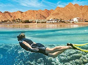 Red Sea Website Pic.jpg