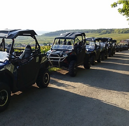 Teambuilding buggy in the champagne vine