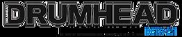 dh-logo-beta-95h_bluMOBL-480.png