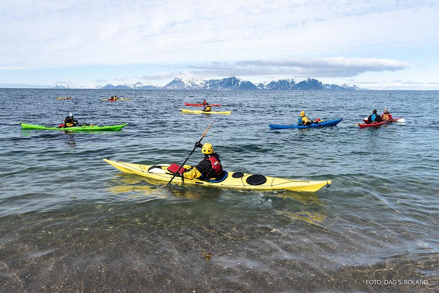 Dag.Roland_Svalbard-2019-9456.jpg