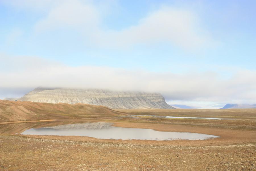 Gammelt tundralandskap på Coraholmen