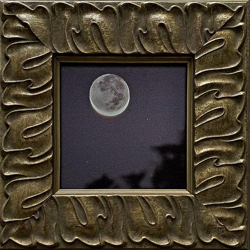 Gilded Light- Earthshine