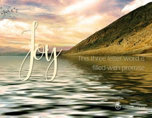 Joy Has Never
