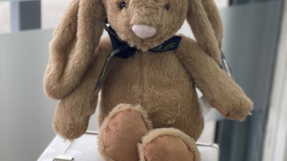 Premium Heartbeat Bunny.jpg